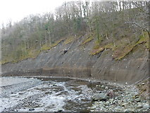 NY2824 : Eroded river cliff and fallen trees, near Briery by Christine Johnstone