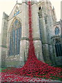 SO5039 : The Weeping Window of Poppies Hereford Cathedral : Week 14