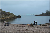 SX9156 : Churston Cove by N Chadwick