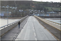SX9372 : Teignmouth & Shaldon Bridge by N Chadwick