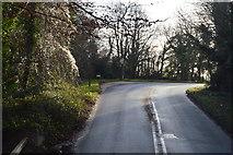SX9268 : Teignmouth Rd by N Chadwick