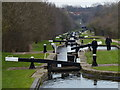 SP0692 : Perry Barr Lock Flight along the Tame Valley Canal by Mat Fascione