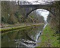 SP0592 : Freeth Bridge crossing the Tame Valley Canal by Mat Fascione
