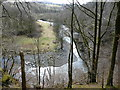 NY2824 : The River Greta from Brundholme Wood by Christine Johnstone