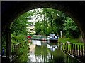 SP4877 : Oxford canal south-east of Newbold Tunnel, Warwickshire by Roger  Kidd