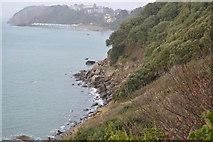 SX9363 : Coastline, Kilmorie by N Chadwick