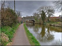 SD4867 : Lancaster Canal between Hest Bank and Bolton-le-Sands by David Dixon