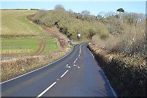 SX9370 : Teignmouth Rd by N Chadwick