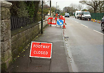 SX9065 : Pavement works, Cricketfield Road, Torquay by Derek Harper