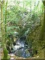 SH7518 : Afon Clywedog on the Torrent Walk by Eirian Evans