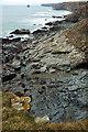 SX0383 : Rocks north of Jacket's Point by Derek Harper