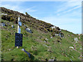 SW4840 : Post 13, Trevalgan Farm Trail by Robin Webster