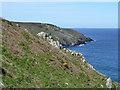 SW4840 : Trevalgan Cliff by Robin Webster