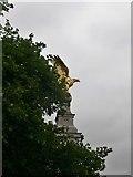TQ3079 : Eagle atop the Royal Air Force Memorial, Victoria Embankment by Eirian Evans