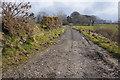 SC3481 : Millennium Way near Sander Farm by Ian S