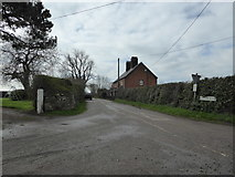 SJ5021 : View down Haston Road by Jeremy Bolwell