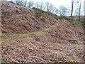 SE0228 : Terraced path, Hough Dean, Midgley by Humphrey Bolton