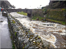 SS7249 : Lynmouth : East Lyn River by Lewis Clarke