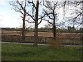 SP8702 : Rignall Road, Hotley Bottom by David Howard