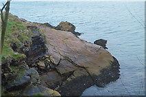 SX9257 : Coastal rocks by N Chadwick