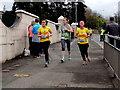 H4572 : Omagh Half Marathon and Fun Run - 248 by Kenneth  Allen