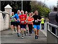 H4572 : Omagh Half Marathon and Fun Run - 251 by Kenneth  Allen