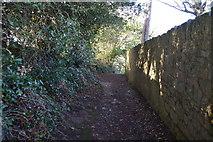SX9262 : South West Coast Path by N Chadwick
