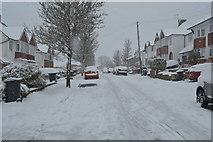 TQ5845 : Snow, Deakin Leas by N Chadwick