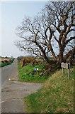 SC2583 : Poortown Road at Ballacross Farm Gate by Glyn Baker