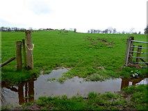 H5371 : Wet ground, Bancran by Kenneth  Allen