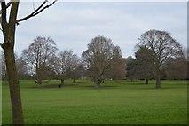 TQ2363 : Cheam Park by N Chadwick