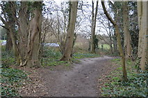 TQ2363 : Footpath, Nonsuch Park by N Chadwick