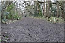 TQ2262 : Muddy London Loop by N Chadwick