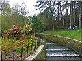 ST1879 : The Cascade in Roath Park, Cardiff by Robin Drayton