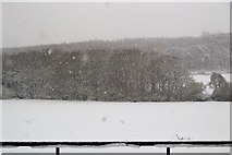 TQ5944 : Southbourne Valley in snow by N Chadwick