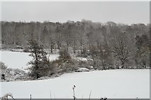 TQ5944 : Snow, Southbourne Valley by N Chadwick
