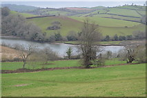 SX8158 : View over the River Dart by N Chadwick