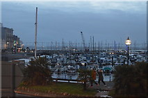 SX9163 : Torquay Harbour by N Chadwick