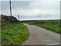 SW6142 : Lane towards Gwealavellan and Reskajeage by Robin Webster