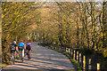 ST1106 : East Devon : Golden Lane : Week 16 winner