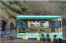 SX9574 : Salty Dog by N Chadwick