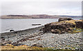 NM5037 : Rock outcrop at shore of Loch na Keal by Trevor Littlewood