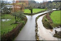 SX8162 : Gatcombe Brook by the road by N Chadwick