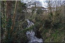 TQ2163 : Wooded stream by N Chadwick