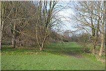 TQ2063 : Hogsmill Nature Reserve by N Chadwick