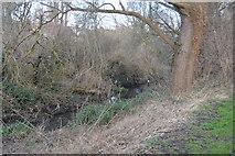 TQ2064 : Hogsmill River by N Chadwick