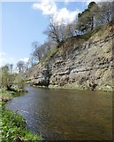 NT8754 : Whiteadder Water, upstream from Bluestone Ford by James T M Towill