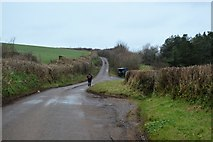 SX8157 : Road to Totnes by N Chadwick
