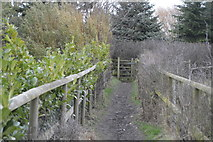TR2157 : Footpath, Little Stour Farm by N Chadwick
