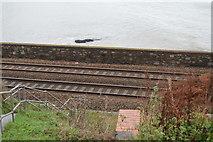 SX9675 : Riviera Line by N Chadwick